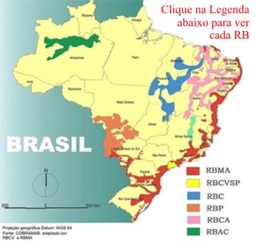 mapa_sintese_
